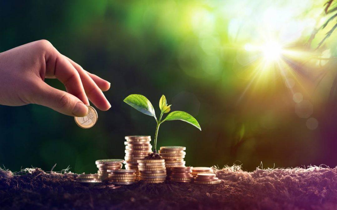 Comment optimiser vos revenus?